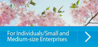 For Individuals/Small and Medium-size Enterprises